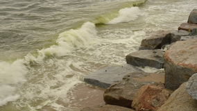 Sea wave at beach with Algal bloom. In sea stock video