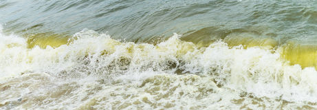 Sea wave with beach, Algal bloom Stock Photo
