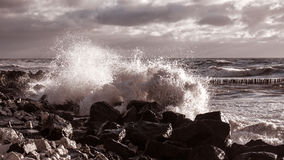 Sea wave on the beach Stock Photography