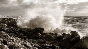 Sea wave on the beach Royalty Free Stock Photos