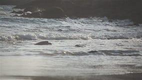 Sea wave crashing coast during sunset stock footage