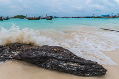 Sea wave crashing on the tree branch. Royalty Free Stock Photos