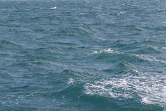 Sea wave in the day time. Royalty Free Stock Photos