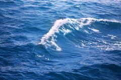Sea wave. In the Gulf of Thailand photographed close-up Stock Photography
