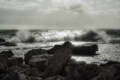 Sea, Wave, Ocean, Shore royalty free stock photography