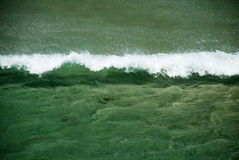 Sea wave overcomes contrary wind. Green sea clear wave overcomes contrary wind, white foam head, shining splashes royalty free stock image