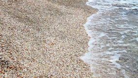 Sea wave rolled ashore covered with shells stock footage