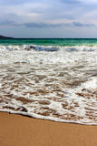 Sea wave on sandy beach Royalty Free Stock Photos