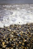 Sea wave on the shore Royalty Free Stock Images