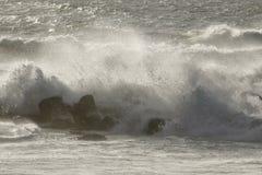 Sea wave splash with spray Stock Images