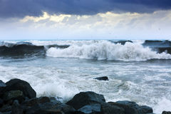 Sea wave during storm in windy day Royalty Free Stock Photo
