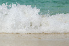 Sea wave swash on sand beach Royalty Free Stock Photography