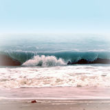 Sea wave. Young sea wave on the beach Stock Images