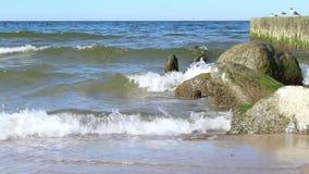 Sea waves break on the breakwater off the coast stock video footage