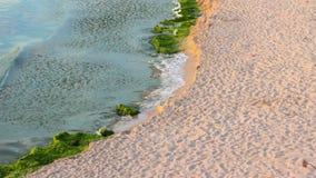 Sea waves breaking on the sandy beach. Sea wave attacks the sandy beach and break on them stock footage