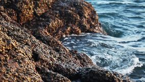 sea waves breaking on the stones stock video footage