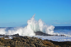 Sea waves crashing. Waves crashing over the rocks in south africa royalty free stock images