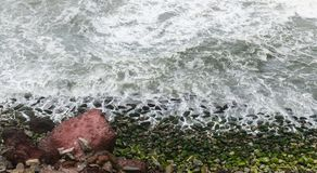Sea waves crashing into algae covered rocks Royalty Free Stock Image