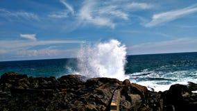 Sea waves. Natural and quick click royalty free stock photography