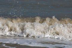 Sea waves near beach Stock Image