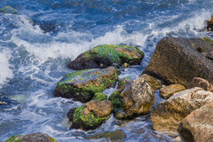 Sea waves and rocks covered with algae stock photos