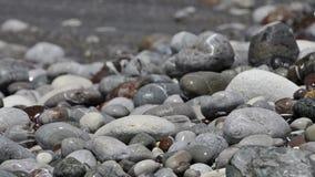 Sea waves roll on pebble beach stock video