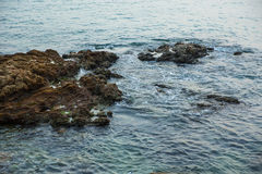 Sea, waves, sand and stones. Saving screen marine landscape. sea waves and stones Royalty Free Stock Photography