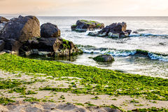 Sea waves on the sandy beach. Calm sea with some wave attacks the sandy beach with boulders and seaweed and break on them in early morning Royalty Free Stock Photography