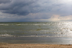 Sea waves on a sandy beach with stormy sky Stock Images