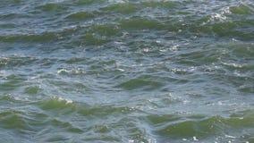 Sea waves splashing stock video footage