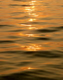 Sea waves on sunset. Waves on the sea water surface, sunset royalty free stock image