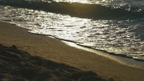 Sea waves washes sand beach at yellow sunset lights. Calm surf image.  stock video footage