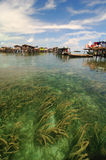Sea weed. Crystal clear water with sea weed in the foreground and aboriginal people's houses in the background, Semporna, Sabah, Malaysia Stock Photo