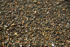 Sea wet pebble Royalty Free Stock Images