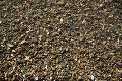 Sea wet pebble. Sea multi-coloured small wet pebble Royalty Free Stock Images