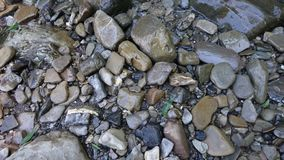 Sea stones of different sizes. Sea wet stones of different sizes. Gray tone royalty free stock photography