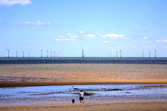 Sea Windfarm. Stock Image