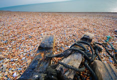 Sea and wood. English channel and a wood stock photography