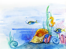 Sea world. Fishes, seaweed and a bowl on a sea-bottom. Drawing a water color Stock Images