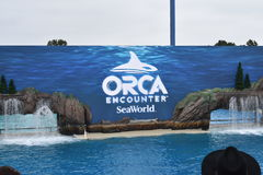 Sea World Ocean Explorers. Sea World in San Diego kicked off the new Ocean Explorers attraction as well as the new Orca Encounter show in style Stock Photos