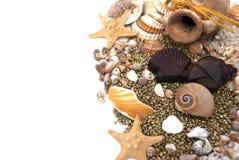 Sea world Royalty Free Stock Photo