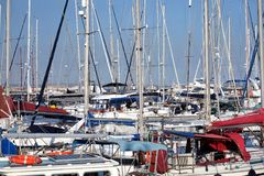 Sea yachts dense stays in calm marina water on bright summer day close up royalty free stock photo