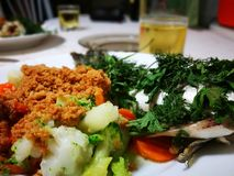 Seabass ψάρια Στοκ Εικόνες