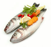 Seabass. Fresh  Sea Bass (Dicentrarchus labrax) with some vegetables isolated on White Background Stock Image