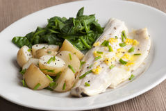Seabass fillet Royalty Free Stock Image