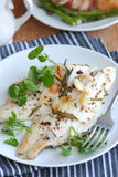 Seabass fillets Stock Photography