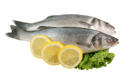 Seabass fish with lemon and greens Royalty Free Stock Images