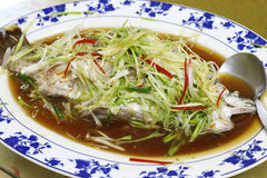 Seabass fish steamed with soy sauce Stock Images