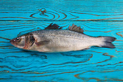 Seabass fresh fish on aqua wood Stock Photo