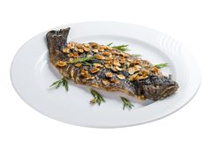 Seabass grill on a white plate. On a white background stock images